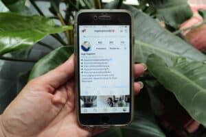 online marketing- instagram bedrijven.